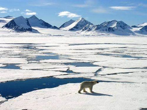 Noordpool-500x375.jpg